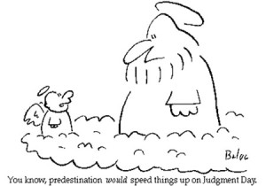 baloopredestination